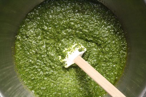 Make basil pesto